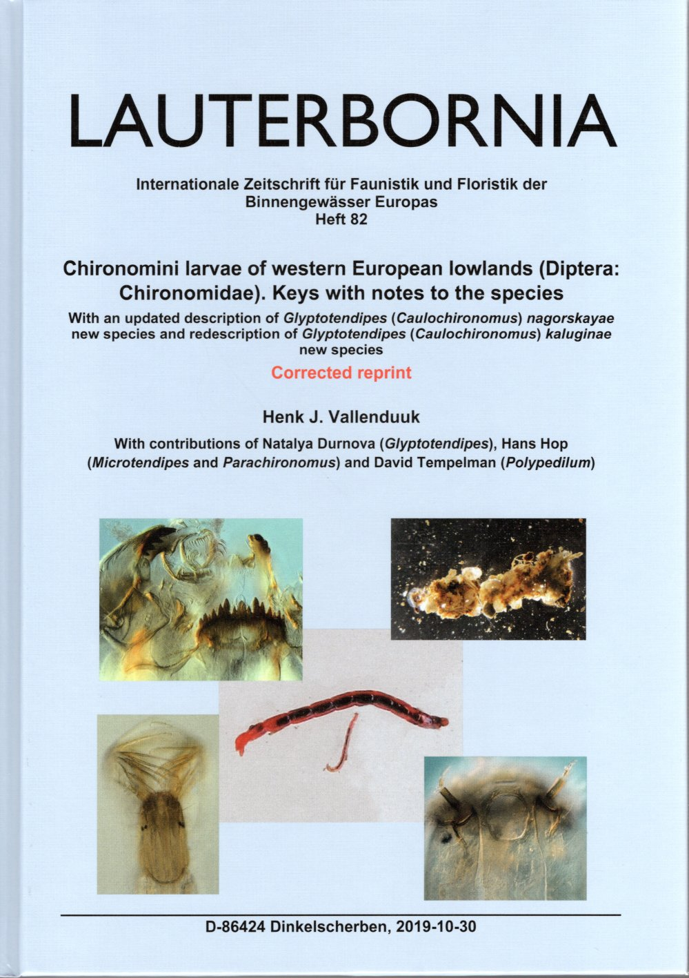 Chironomini larvae of western European lowlands (Diptera: Chironomidae). Keys with notes to the species