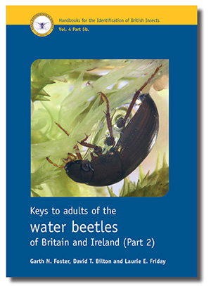 Keys to the adults of the water beetles of Britain and Ire­land (part 2)